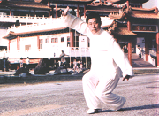 陈小旺大师在天后宫演示陈式太极拳 Grand Master Chen Xiao Wang demonstrating Chenshi Taijiquan at Thean Hou Temple, Kuala Lumpur